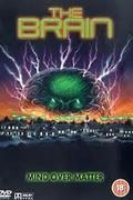 Az agy (The Brain)