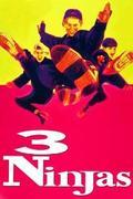 Három kicsi nindzsa (3 Ninjas)