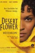 A sivatag virága (Desert Flower)
