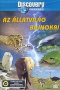 Az állatvilág bajnokai (Animal games) 2004. Állat Olympia