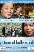 Hollis Woods képei /Pictures of Hollis Woods/