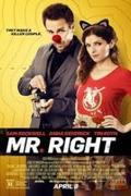 Gyilkos Páros /Mr. Right/