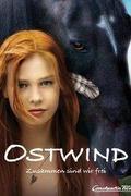 A menedék /Ostwind - Zusammen sind wir frei/ 2013.