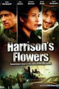 A felejtés virágai /Harrison's Flowers/