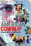 Amerikai gólyahír /American Cowslip/
