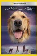 Kutyák az ember szolgálatában