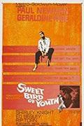 Az ifjúság édes madara /Sweet Bird of Youth/ 1962.