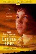 Kicsi Fa az indiánok között /The Education of Little Tree/