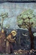 Giotto és Assisi Szent Ferenc /Francesco d'Assisi - Gli affreschi della Basilica Superiore/