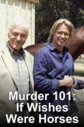 Nyomoz a professzor: Kilóg a lóláb (Murder 101: If Wishes Were Horses)