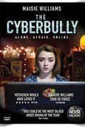 Az internetes zaklató /Cyberbully/