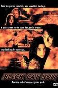 Pokoljárás (Black Cat Run) 1998.