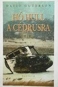 Hó hull a cédrusra /Snow Falling On Cedars/