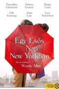 Egy esős nap New Yorkban (A Rainy Day in New York) 2019.