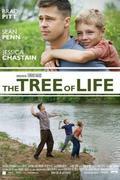 Az élet fája (The tree of life) 2011.
